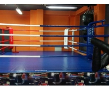 Club Platform Boxing Ring 4.5х4.5х0,35 m. Ropes 3.5х3.5 m.