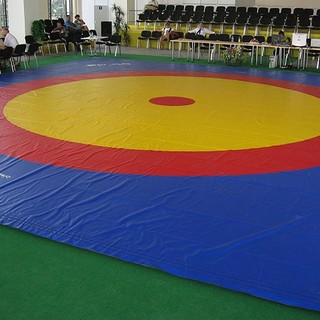 Wrestling mats and covering